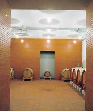 The cellar. Here wines patiently wait for time to do its job