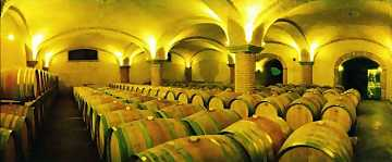 The cellar where Matteo Correggia's wines age
