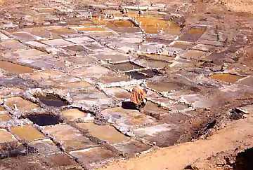 Salt-works in Ténéré Desert (Niger)