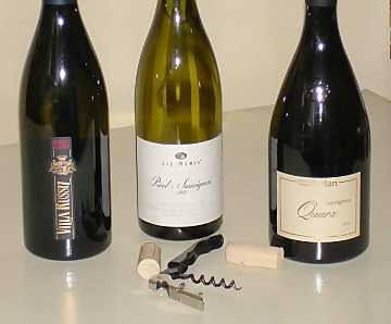 The Sauvignon Blanc wines of our comparative tasting
