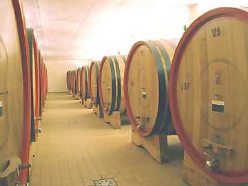 The cask is the most common tool for the aging of red wines