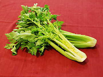 Found in every country of the world, celery is a common ingredient in many dishes