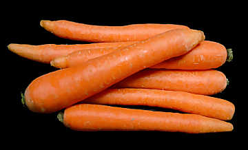 Carrots are among the most common vegetables in cooking