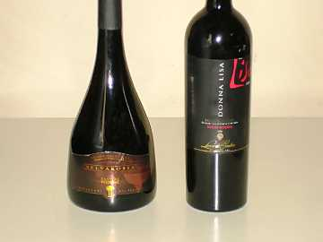Two of the wines of our comparative tasting: Cantine Due Palme's Salice Salentino Rosso Riserva Selvarossa and Leone de Castris' Salice Salentino Rosso Riserva Donna Lisa