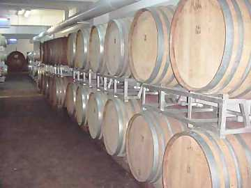 The view of barrels in a winery is a suggestive view, however capable of influencing the emotional tasting of a wine