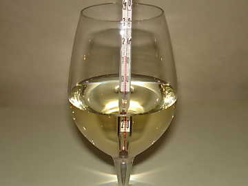 Sensorial tasting of white wines is done at a temperature higher than the one used in service