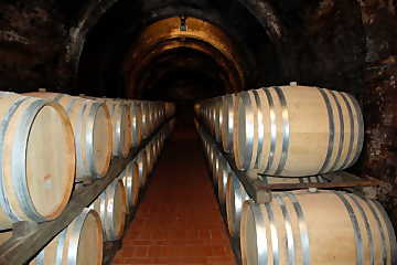 Casks and barriques are the containers in which oxygen and time favor the evolution of wine