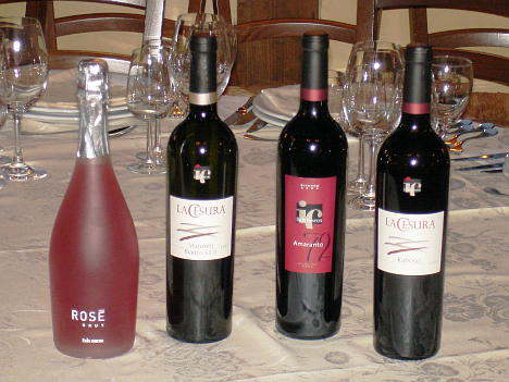 Italo Cescon's  wines tasted during the event