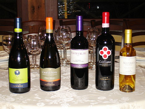 The five wines of Umani Ronchi tasted during the event