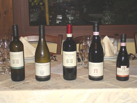 The five wines of Antonelli San Marco tasted during the event