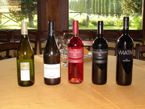 The five wines of Cantele winery tasted during the event