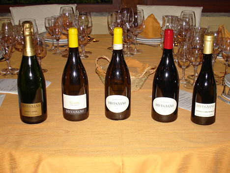 The five wines of Decugnano dei Barbi tasted during the event