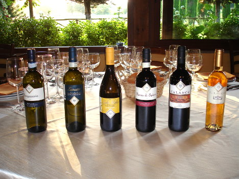 The six wines of Tenuta Le Velette winery tasted during the event