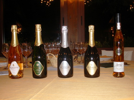 The four Trento Altemasi and the rare Vino Santo Arèle 2000 tasted in the event