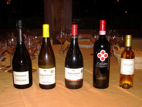 The five wines of Umani Ronchi winery tasted during the event