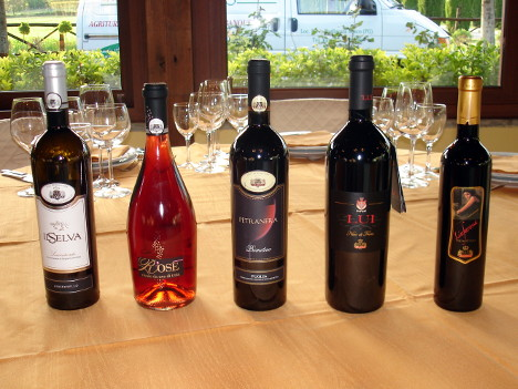 The five wines of Albea tasted during the event