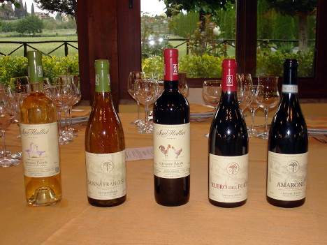 The five wines of Giovanni Ederle tasted during the event