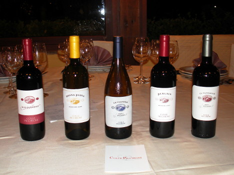 The five wines of Colle Picchioni tasted during the event