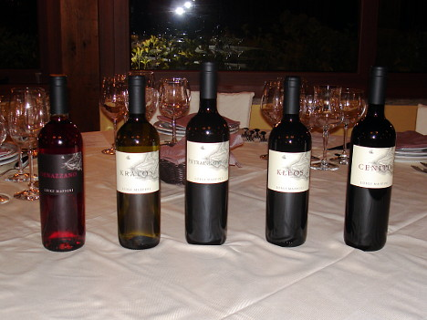 The five wines of Luigi Maffini tasted during the event