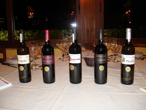 The five wines of Fattoria Ca' Rossa tasted during the event