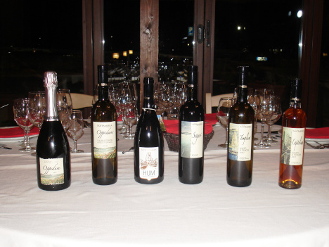 The six wines of Sant'Andrea Winery tasted in the course of the evening