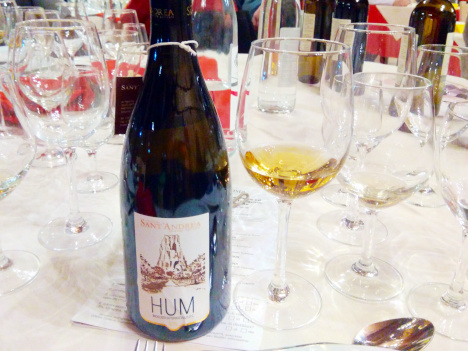 The noble golden robe of the magnificent Moscato di Terracina HUM 2014
