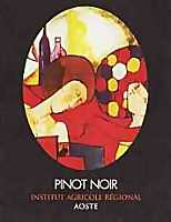 Valle d'Aosta Pinot Noir 2001, Institut Agricole Régional (Italy)