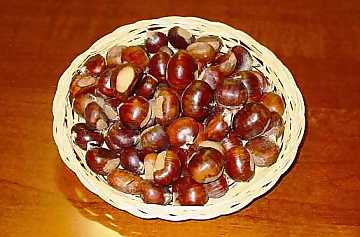Chestnuts: dainty fruits of autumn