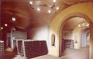 A view of the cellars where Franciacorta bottles age