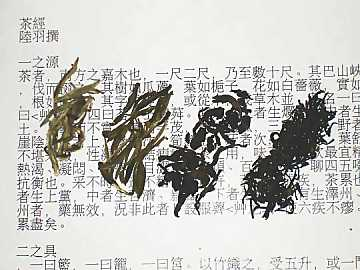 Left to right: white tea, green tea, semifermented tea, black tea. In the background the first chapter of Lu Yu's Cha Jing