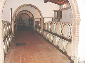 Casks and barriques are the containers generally used for malolactic fermentation