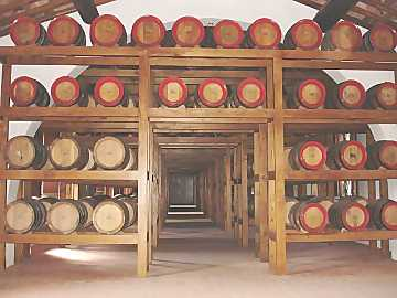 The suggestive Avignonesi's vinsantaia where caratelli of precious Vin Santo ages for the ten years