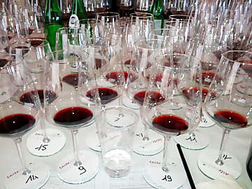 The tasting of red wines at TasteUmbria