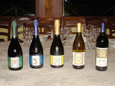 The five wines of Agricola Gatta tasted during the event