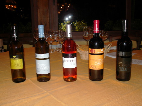The five wines of Cantine Barbera tasted during the event