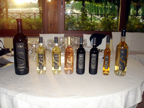 The six wines of Siddura tasted in the course of the event